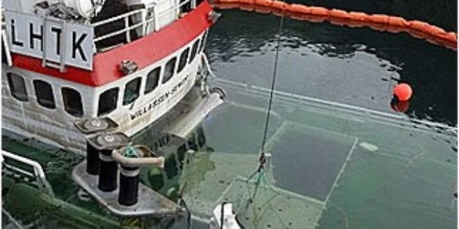 Norwegian Whaling Vessel Willassen Senior sunk in 2007