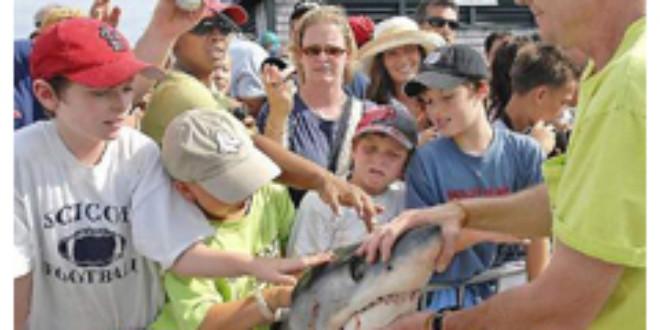 Hilary Russ/Cape Cod Times