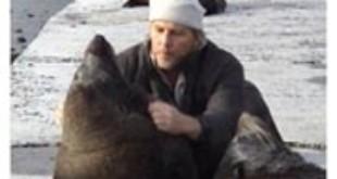 Francois Hugo checks seals for injuries From seashepherd.org