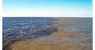Sediment from the Mississippi River carries fertilizer to the Gulf of Mexico