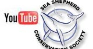 Sea Shpherd Youtube Channel