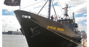 The ship is undergoing a major refit ahead of their next campaign in Antarctica later this year. (AAP)