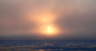 Científicos predicen veranos sin hielo en el ártico en 2050