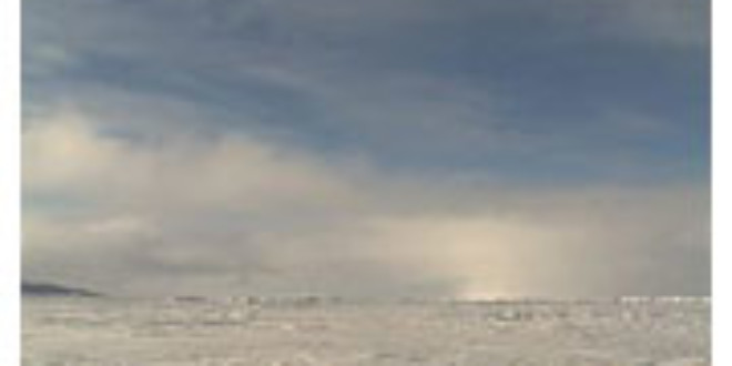 Arctic Ocean more vulnerable to human-induced changes than Antarctic Ocean