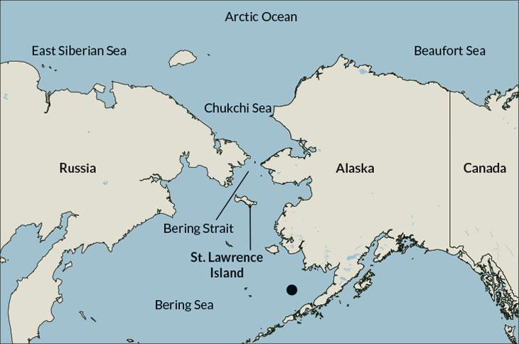 Estrecho De Bering Mapa